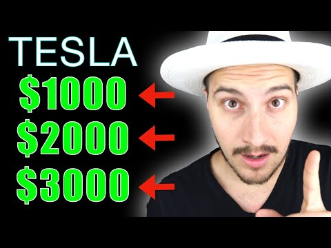 My Prediction for Tesla Stock Price the next 12-24 Months