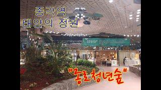 """종각역 태양의 정원 """"종로청년숲"""" 스케치"""