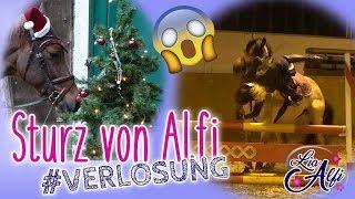 Lia & Alfi - Sturz beim Springen - Post von Anita Girlietainment