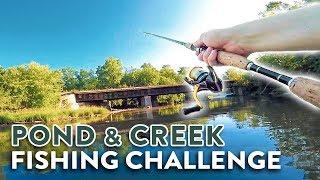 Bass Fishing Ponds & Creeks | INSANE Creek Smallmouth Catch!