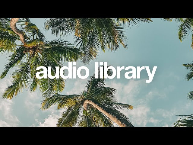 Piña Colada — LiQWYD [Vlog No Copyright Music]