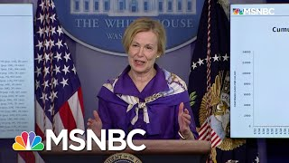 Dr. Birx: There Is Still 'Significant Virus Circulating' In D.C. And Other Metro Areas | MSNBC