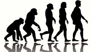 10 Weird Facts about Human Evolution
