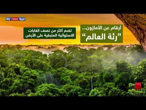 حرائق الأمازون تنذر بمخاطر بيئية وصحية  - نشر قبل 10 ساعة