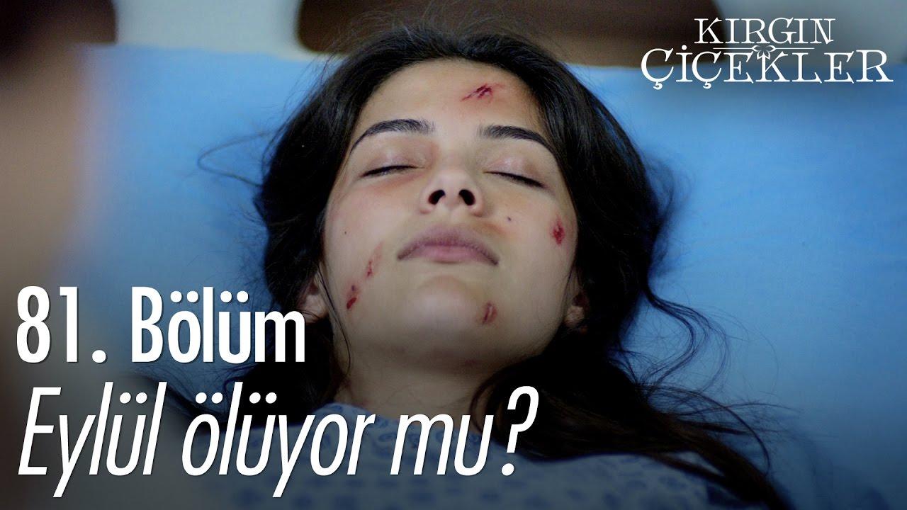 Eylül ölüyor Mu Kırgın çiçekler 81 Bölüm Atv Youtube