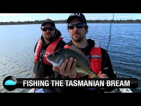 Lure Fishing For Bream In Tasmania | We Flick Fishing Videos