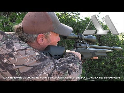 Game Bird Hunting with the Air Arms S510 Ultimate Sporter XS