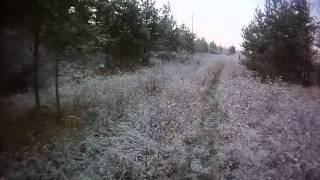Охота на лося (видео выстрела)