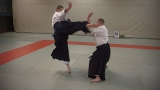 Aikido: Stephane Goffin - Nage Waza and Application