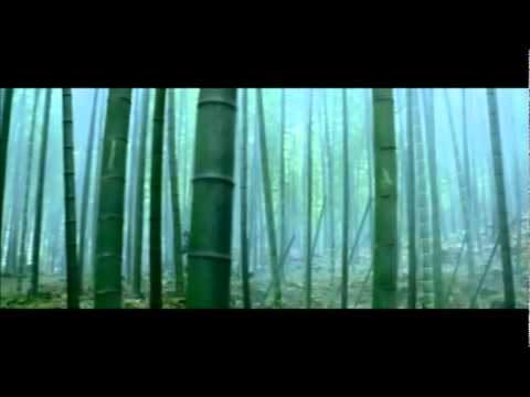 House of Flying Daggers - Bamboo forest fight