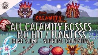 Video Calamity Revengeance - All Boss Fights NO HIT / FLAWLESS [CALAMITY 1.2.0.4] download MP3, 3GP, MP4, WEBM, AVI, FLV November 2017