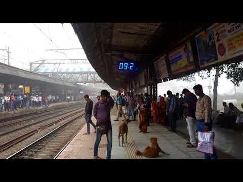 Mumbai me Chaya GHANA FOG trains Hui Radd