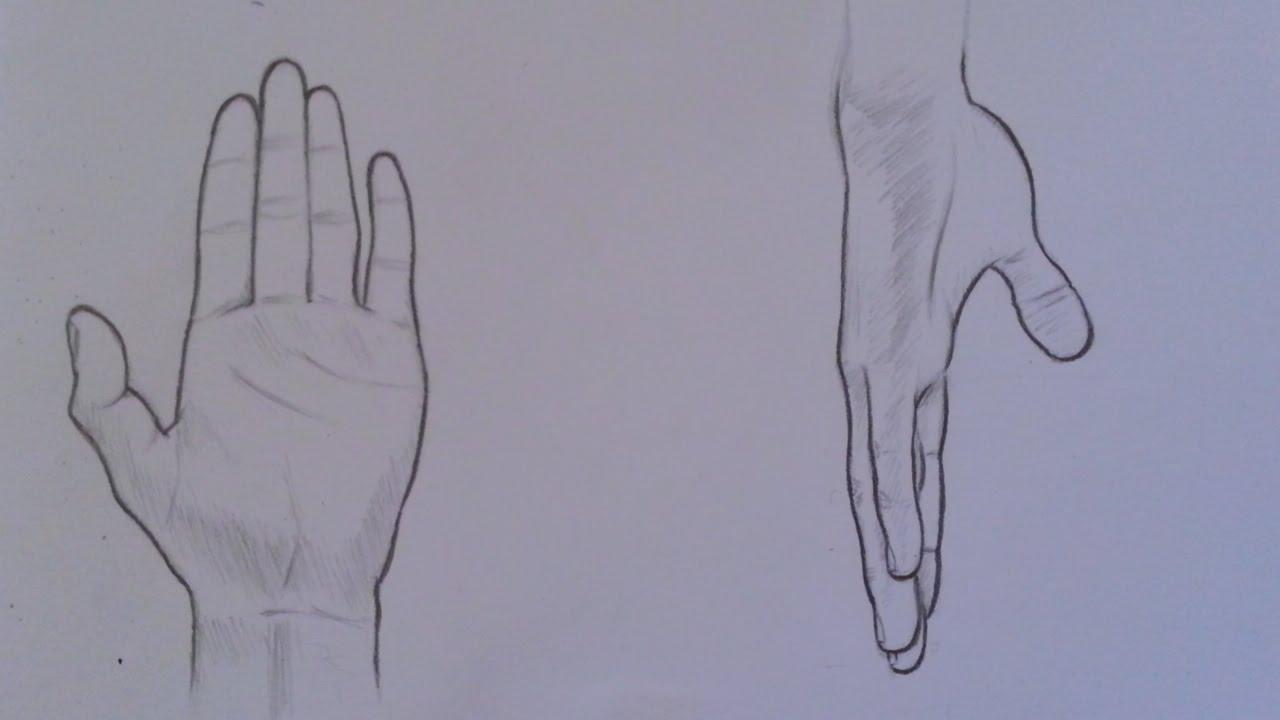 كيف أرسم اليد كيف أرسم يد رجل في وضعيتين مختلفتين رسم يد رجل من الداخل Youtube