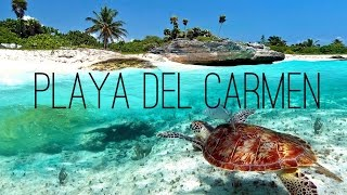 Playa del Carmen - Mexico 2016