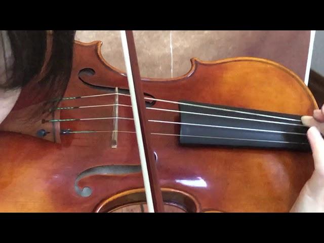 Ifstrings Private Stock Classic #148 Guarneri del Gesu 1737