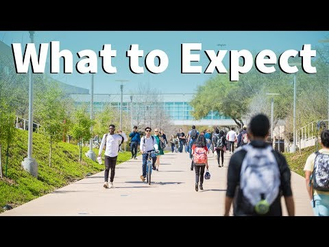 Webinar (Fall 2017) - What to Expect for Your First Month at UTD