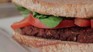 "Diabetic Veggie Burger 2015 Budweiser Super Bowl Commercial ""Lost Dog"" | Health Reset Meals"
