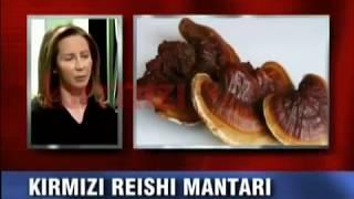 Uzman Doktor Ayla Çetin Reishi Mantarını Anlatıyor Check Up