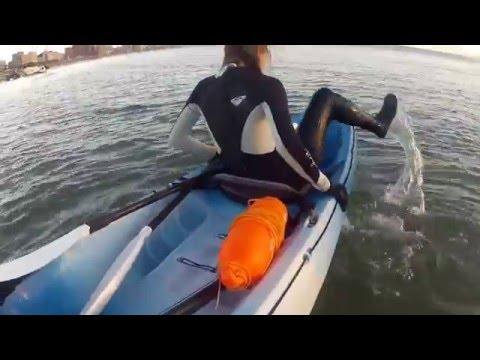 Durban limestone vetchies northpier dive video