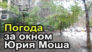Вид из окна дома Юрия Моша. Погода в Нью Йорке.