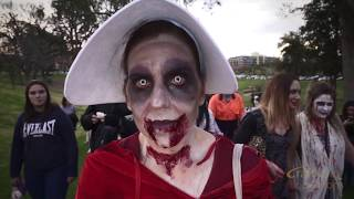 Adelaide Zombie walk 2018 Official HD