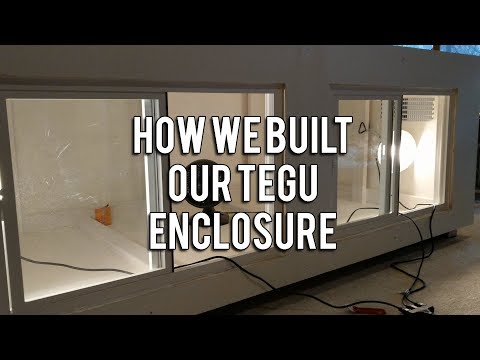 How We Built Our Custom Tegu Enclosure