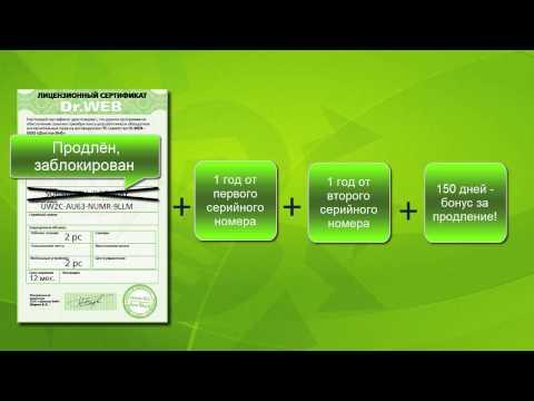 Как зарегистрировать лицензию для Dr.Web Security Space 2 ПК 1 год