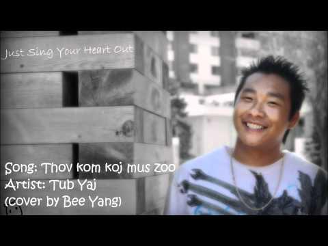 Thov kom koj mus zoo - Tub Yaj (cover by Bee Yang) thumbnail