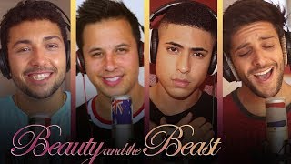 Beauty and the Beast - Ariana Grande & John Legend (Continuum cover)