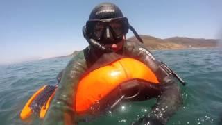 Приморский край Находка ....Подводная вылазка Гребешок
