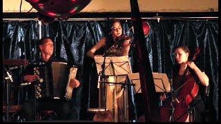 Красивая инструментальная музыка SPIEL DE TROIS концерт в Харьковском планетарии