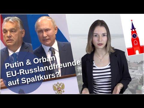 Putin & Orban: EU-Russlandfreunde auf Spaltkurs?