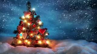 Chuông Giáng Sinh Chuông Hòa Bình | Nhạc Thánh Ca | Nhạc Noel