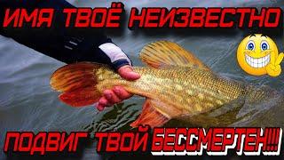 Самая вкусная рыба это колбаса Приколы на рыбалке Трофейная рыбалка Приколы на воде Я ржал до слёз