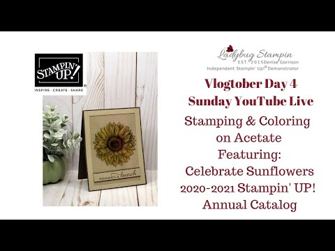 ❤️ LIVE Vlogtober Day 4 Stampin' Up! Celebrate Sunflowers 2020-2022 Annual Catalog