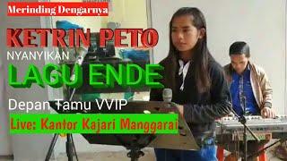 Gambar cover Lagu Ende_Cover by Ketrin Peto