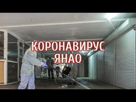 🔴 На Ямале прогнозируют еще 20 случаев коронавируса