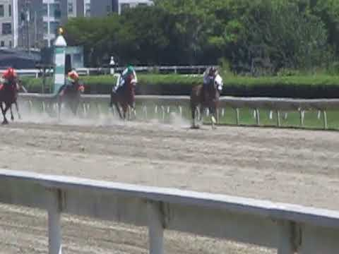 Horse racing at Suffolk Downs racetrack in Boston