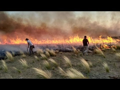 600 mil hectáreas incendiadas en La Pampa