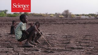 How early warnings of drought help prevent catastrophic famines