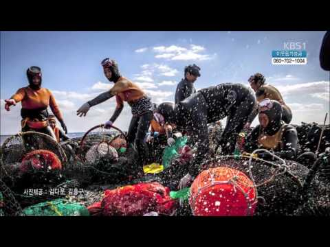 "[ENG Subtitles] Jeju Haenyeo divers and their traditional work song ""Ieodo Sana"""