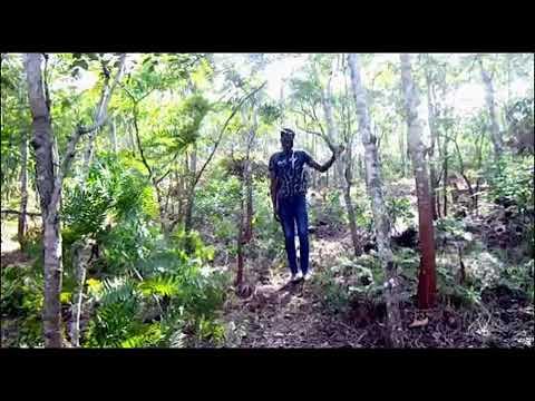 Download MAISHA NI UTATA Episode 2