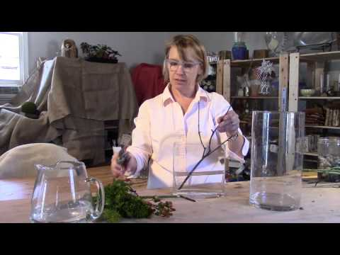 Video - How to Pick a Container for Your Arrangement