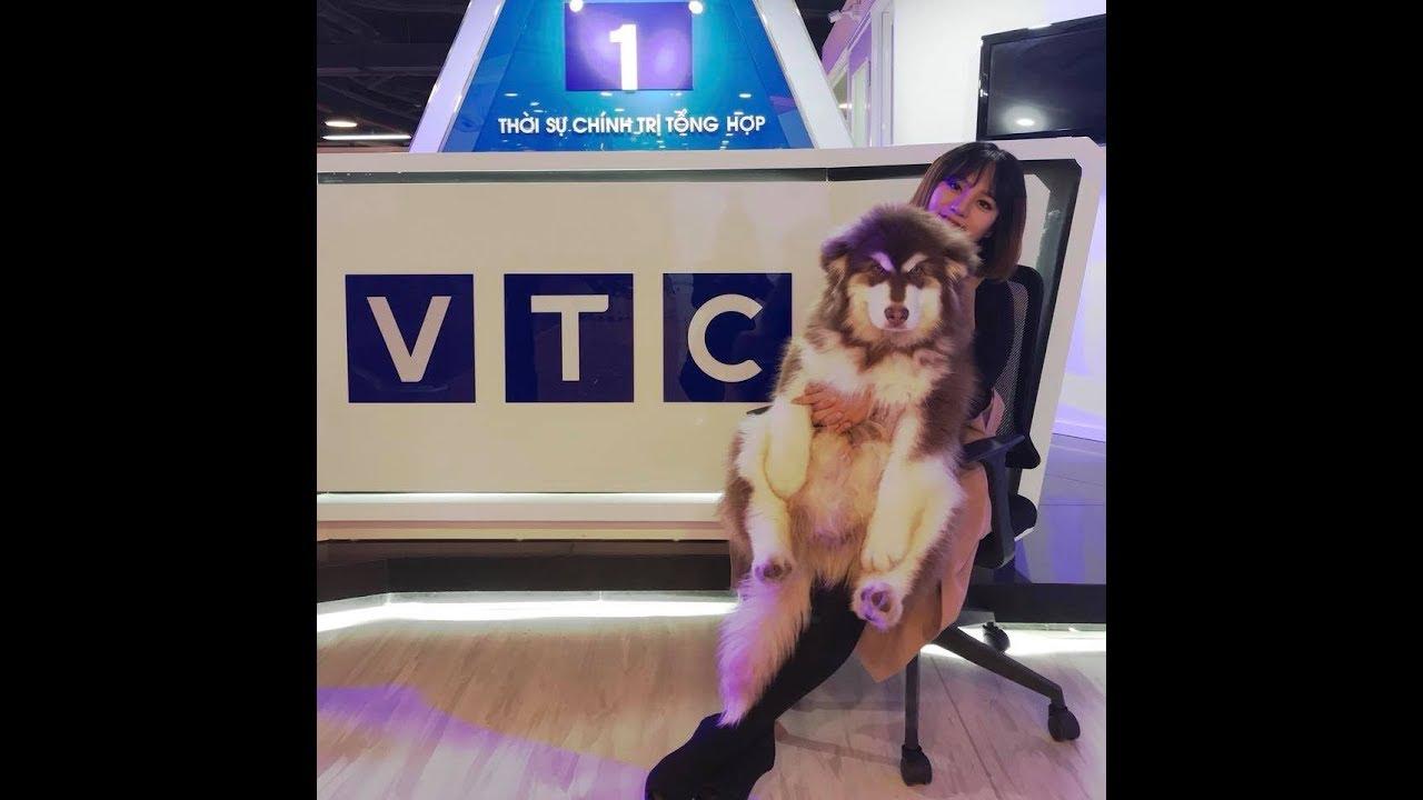 Hậu trường siêu hài Mật được mời lên VTC1 - đi quay mà vui quá cơ ^^