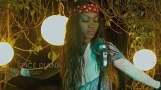 Tekinanta - Spice Diana