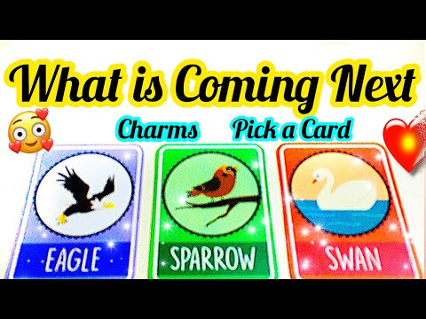 PICK A CARD- CHARMS- WHO YOU WILL MARRY- INITIALS, NATURE-APKI SHADI KISE HOGI- MWT- آپ کی شادی from YouTube · Duration:  1 hour 1 minutes 5 seconds