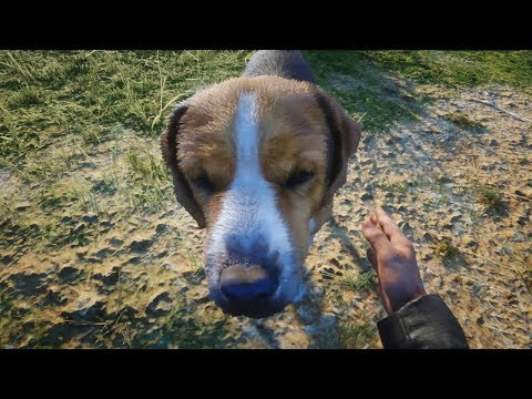I GOT A PET DOG! - Red Dead Redemption 2 Online