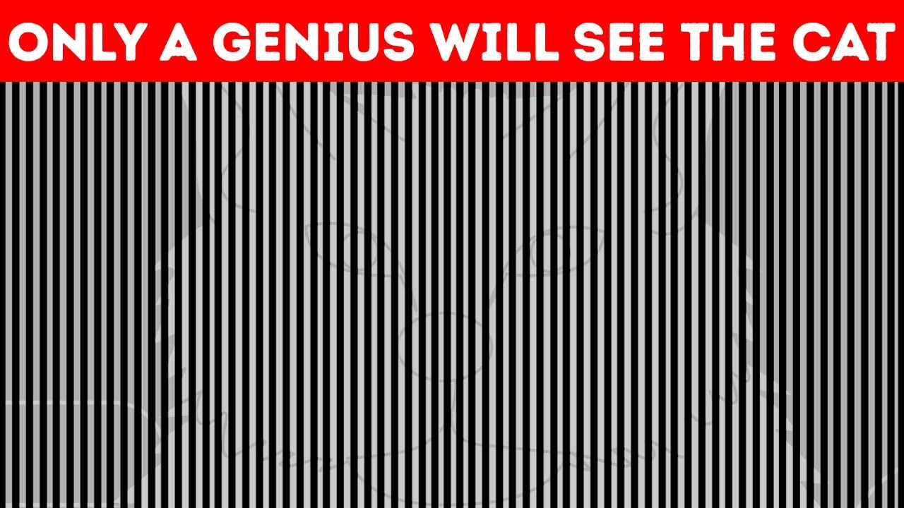 Optical Illusions Test Shows Your Eyes Play Tricks on You