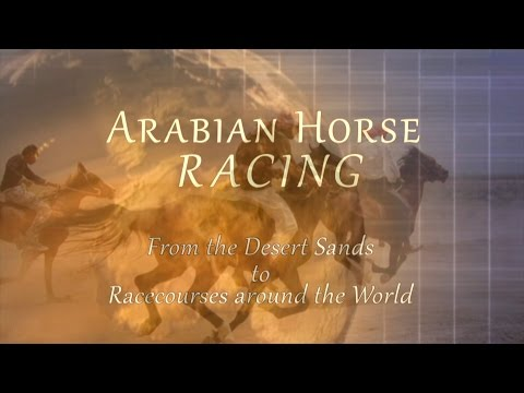 Arabian Horse Racing Documentary ~ From Desert Sands To Racecourses Around The World