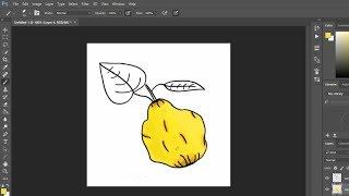 Drawing A Quince [SpeedArt]